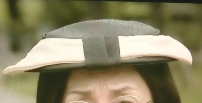 わたし旦那をシェアしてた夏木マリの帽子
